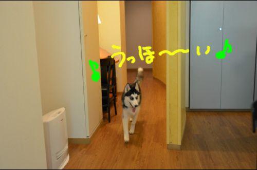 Mydoodle2_2