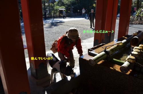 Kamakura1_2