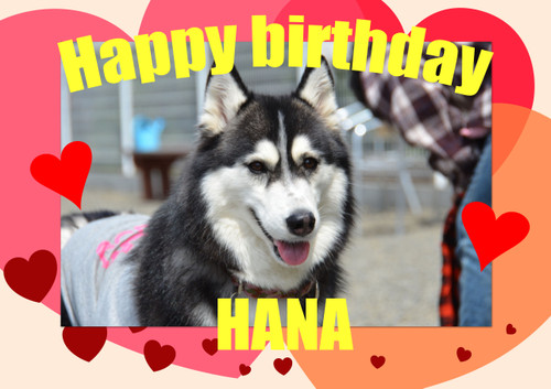 Happybirthdayhana